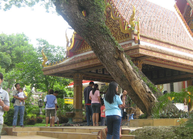 http://www.songklapra.com/prako14032012/9.jpg